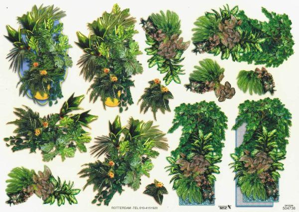 Grøn sammenplantninger i krukker, tbz